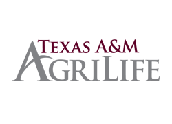 logo-Texas-A&M